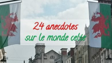24 anecdotes sur le monde celte